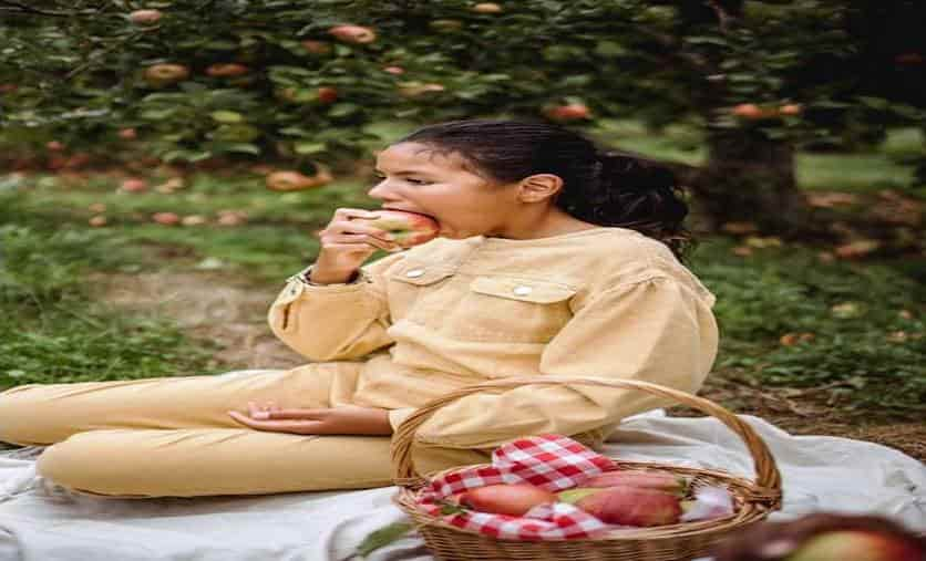 diet chart for pregnancy in hindi